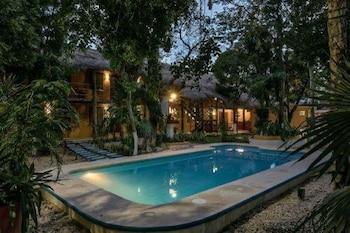 Playa del Carmen bölgesindeki Esduma Iguanas Hotel Playa del Carmen resmi