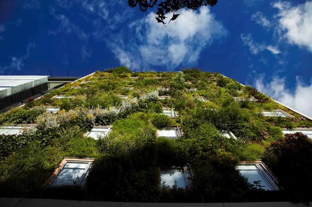 Habitación (Bureau) - Vistas al jardín