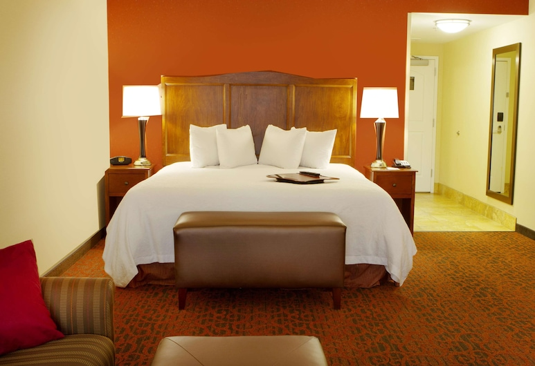 Hampton Inn Bangor, Bangor, King Bed With Sofabed, Guest Room