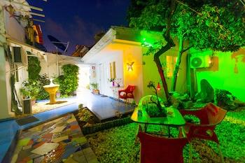 Fotografia hotela (Posada Nativa Lizard House) v meste San Andres