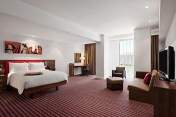 克路治克盧日納波卡希爾頓歡朋酒店的圖片