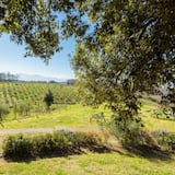Land view from property