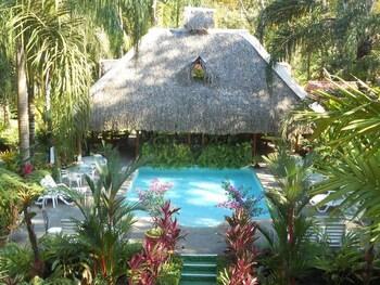 Picture of La Palapa Eco Lodge Resort in Portalon