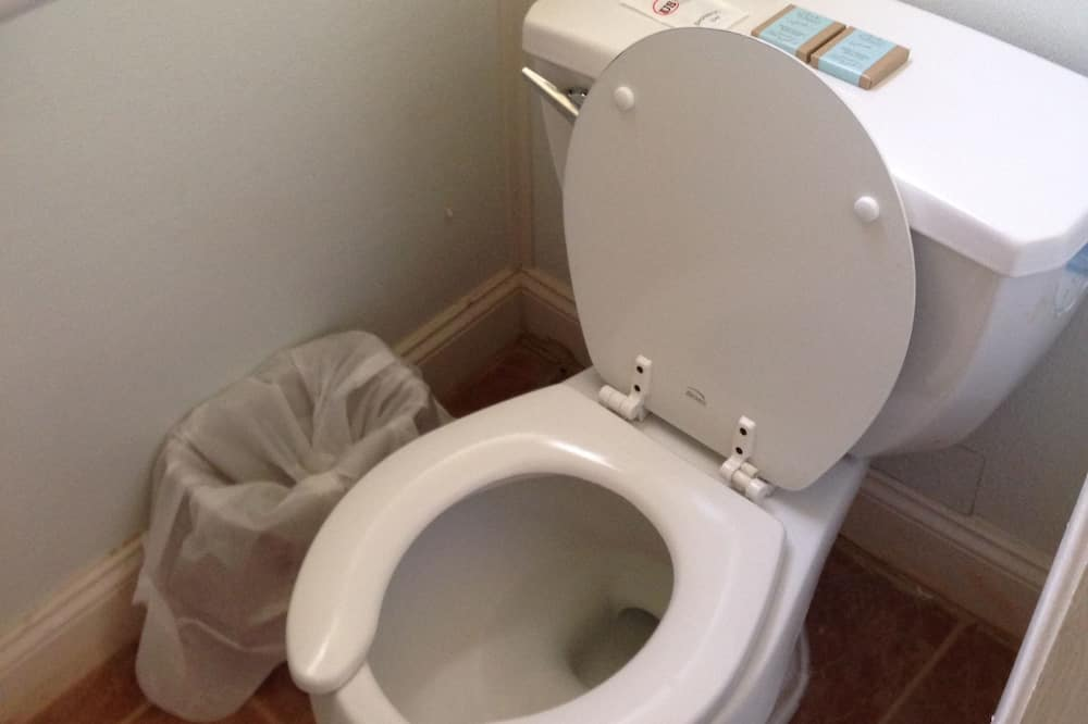 デラックス トリプルルーム ベッド (複数台) - バスルーム