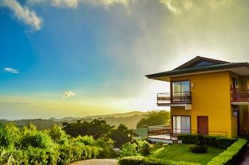 תמונה של Hotel Ficus - Monteverde במונטוורדה