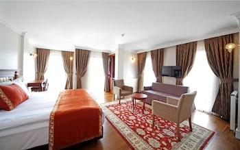 Picture of Aren Suites in Istanbul