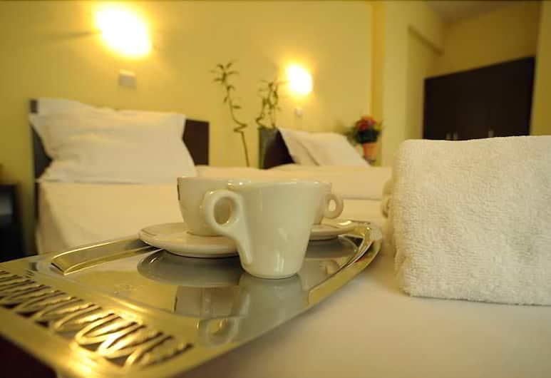 Hotel Alexander, Sofia, Guest Room