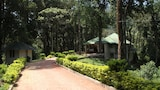 Choose This Mid-Range Hotel in Munnar