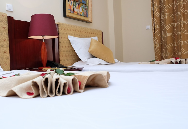 Siyonat Hotel, Addis Ababa, Twin Room, Bilik Tamu