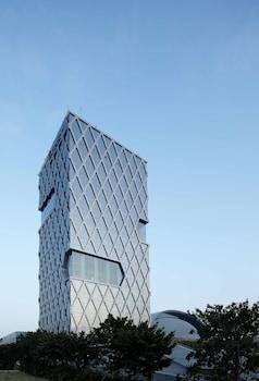 深圳深圳灣木棉花酒店的圖片