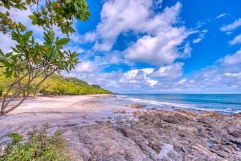 Image de El Sano Banano Beachside Hotel Cobano