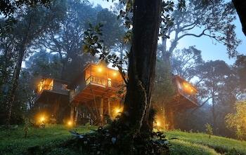 Picture of Nature Zone Jungle Resort in Devikolam