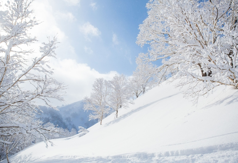 平底煎鍋旅館, Niseko, 滑雪場
