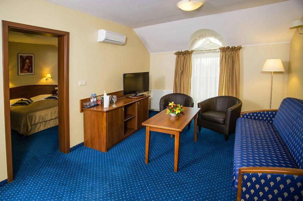 舒適開放式客房 - 客廳