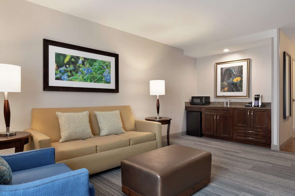 Suite, 1 King Bed, Private Bathroom - Living Area