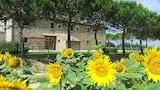 Choose This Cheap Hotel in Cortona