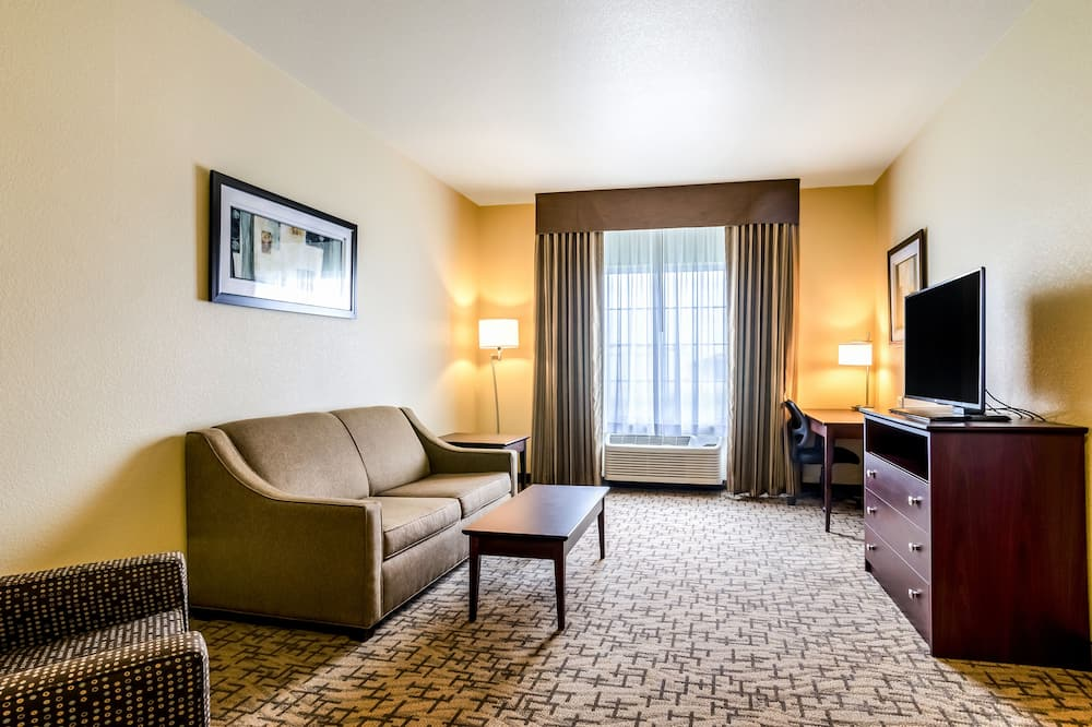 Suite, 1 King Bed with Sofa bed, Non Smoking - Guest Room