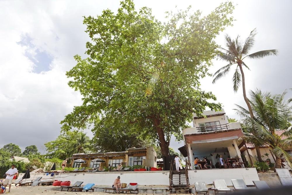 the hammock samui beach resort koh samui beach ocean view book the hammock samui beach resort in koh samui   hotels    rh   hotels