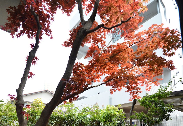 Guest House Hokorobi, Fukuoka, Dvor