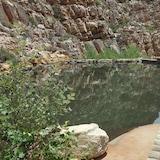 Přírodní bazén