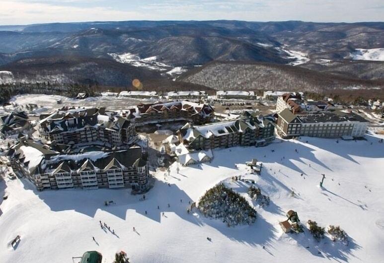 Allegheny Springs, Snowshoe, Vista aérea