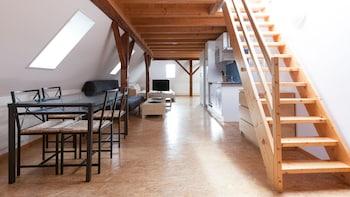 蘇黎世希爾菲德瑞士之星公寓酒店的圖片