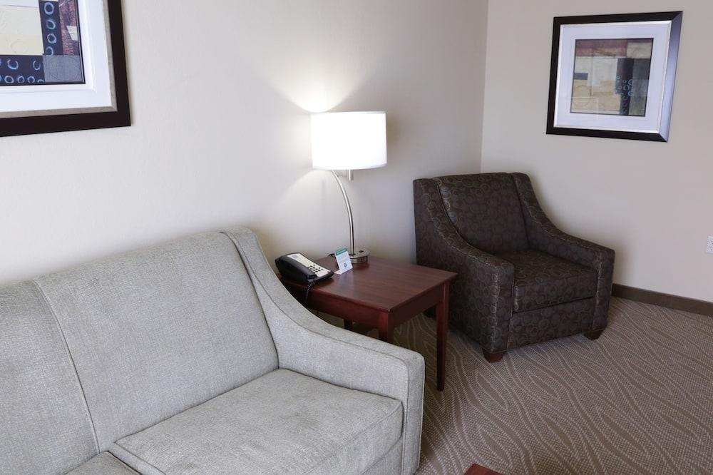 Suite, 1 kingsize-seng med sovesofa, ikke-røyk - Oppholdsområde