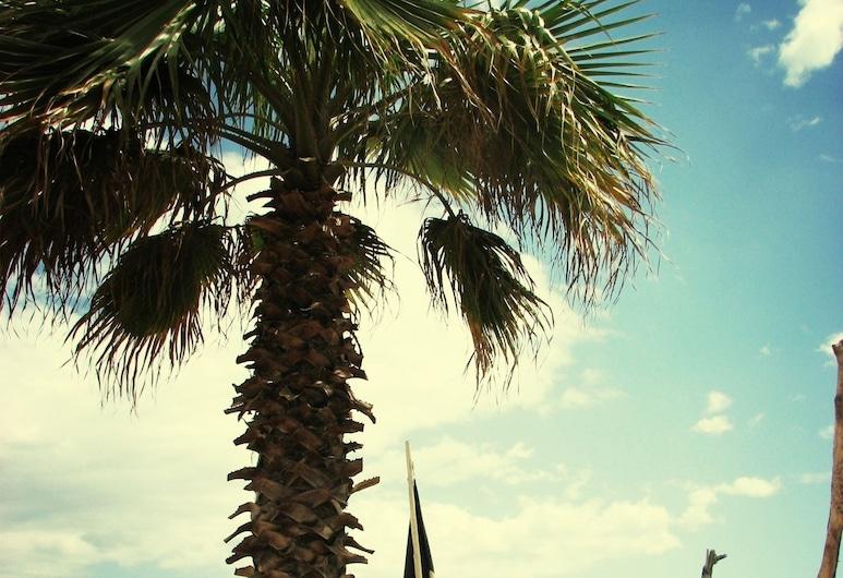 Riccione Beach Hotel, Riccione, Spiaggia
