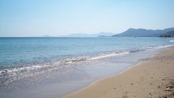 Picture of Aphrodite Hotel & Suites in Samos