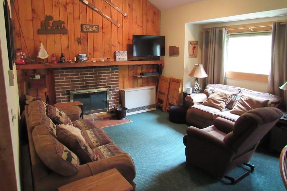 公寓客房 (Knotts Road 2A, Waterville Estates) - 客廳