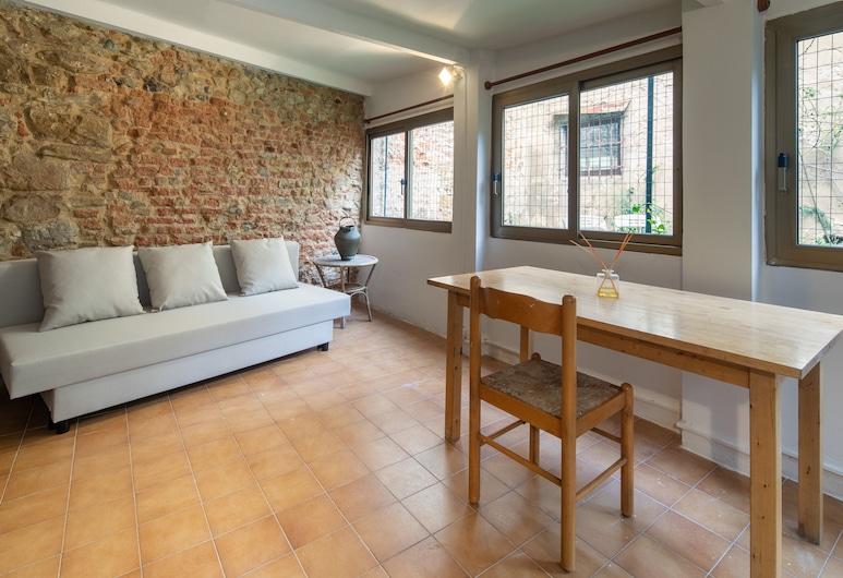 Oltrarno Garden, 佛羅倫斯, 舒適公寓, 客廳