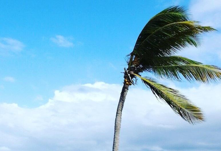 La Arboleda Ciudad Las Canas Cap Cana, Punta Kana, Paplūdimys