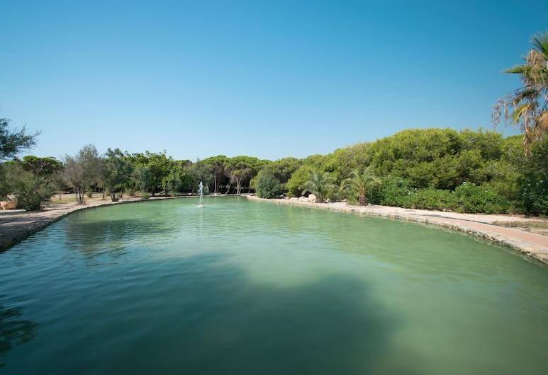068 Parquemar Pool - Ac/wifi, Торревьеха, Бассейн