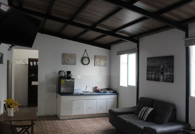 Cinnamon Loft, Next to Masaryk Polanco, Mexico-stad, Woonkamer