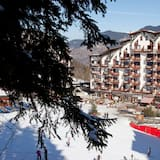 Comfortable Apartments in a Renovated Residence, With Direct Access to the ski Slopes
