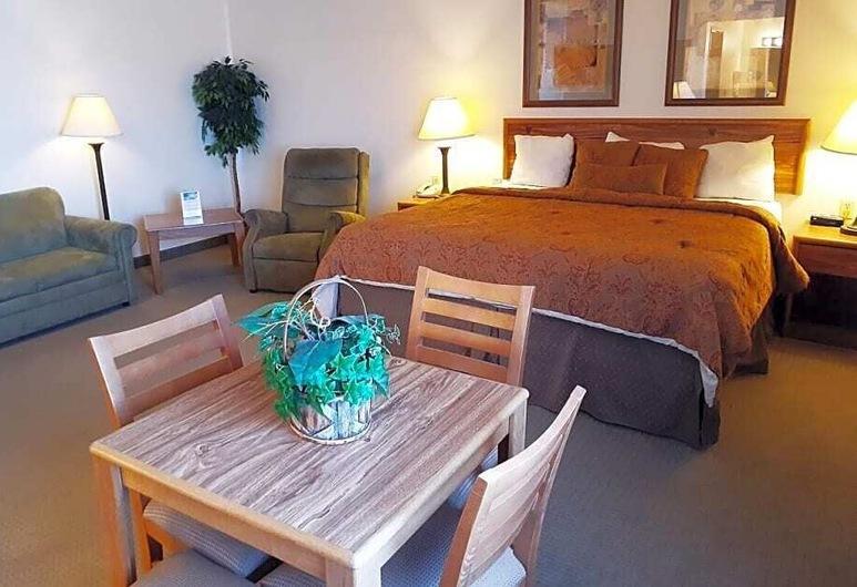 Hotel Ulysses KS West, Ulysses, Guest Room