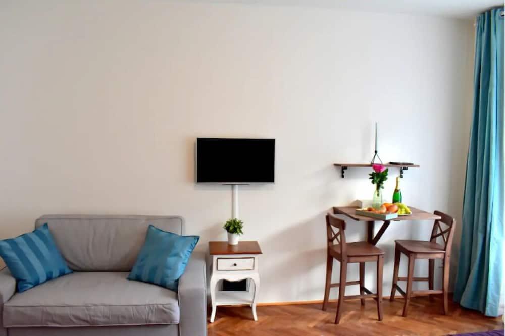 พรีเมียมอพาร์ทเมนท์ - พื้นที่นั่งเล่น