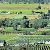 Guesthouse @ Crowsnest Vineyards - C