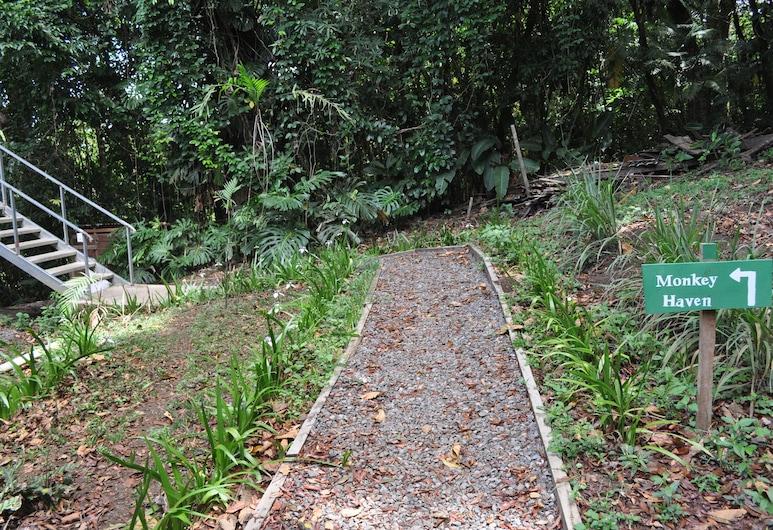 Hidden gem Couples Retreat, Fabulous View & Forest, Monteverde