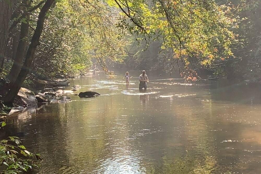キャビン (Chimney Path on Fightingtown Creek) - プール