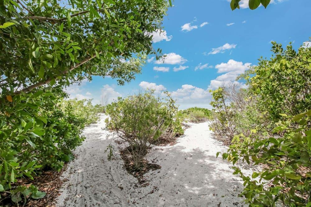 Condo (Estero Beach & Tennis 207) - Property Grounds