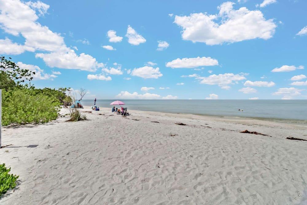 Condo (Estero Beach & Tennis 207) - Beach