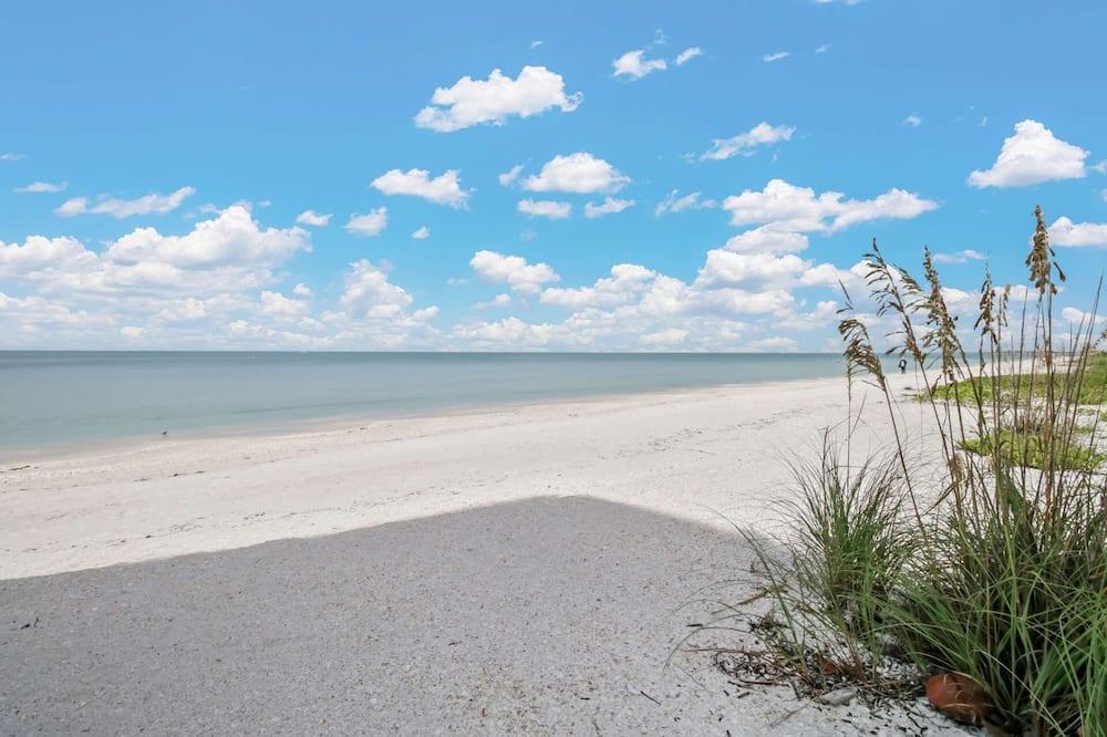 Condo (25870 Hickory Blvd #704) - Beach
