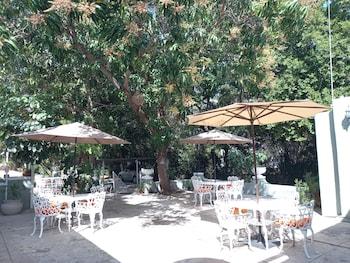 Nuotrauka: Casa Espejo Da Luca, Merida
