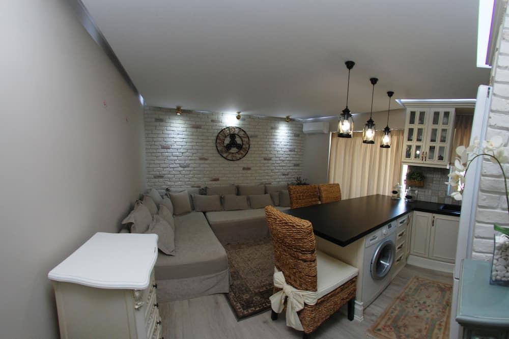 高級公寓 - 私人廚房