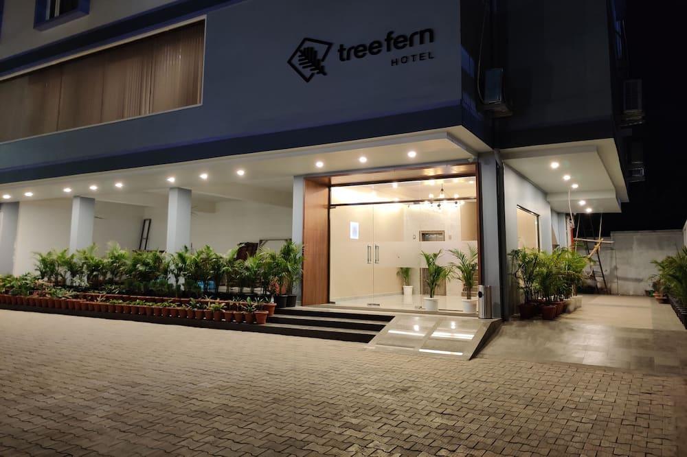 Hotel Tree Fern