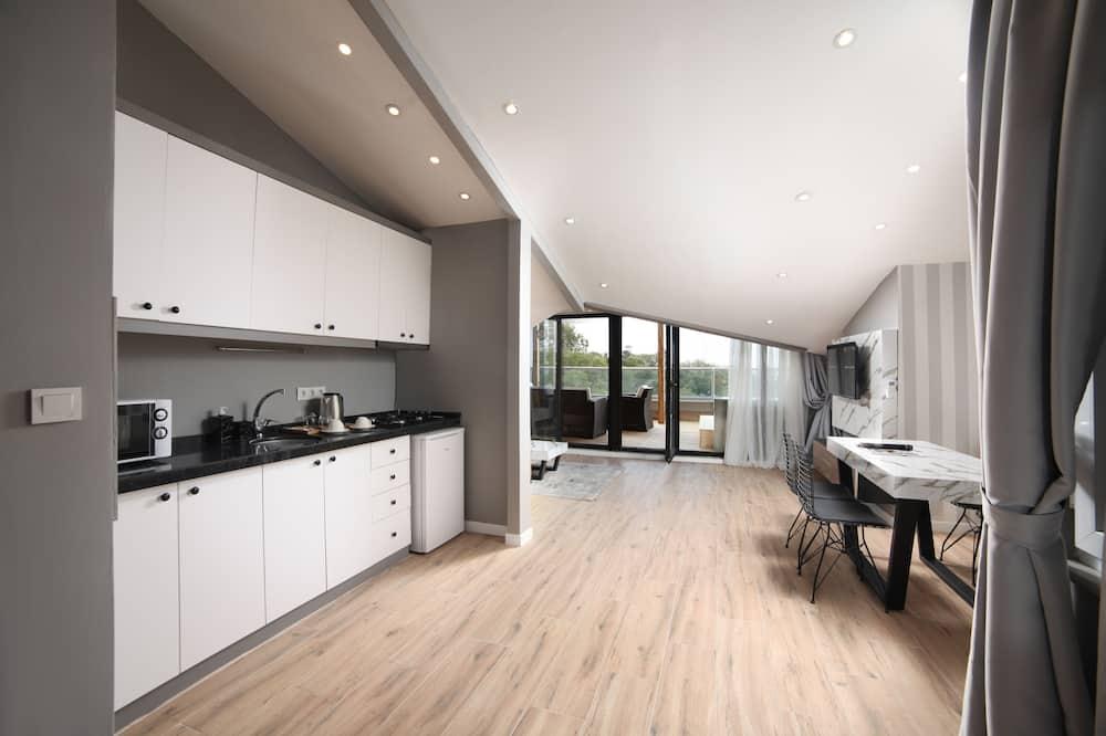شقة بانوراما - لغير المدخنين - بمطبخ - منطقة المعيشة