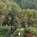 וילה, מספר מיטות - שטחי הנכס