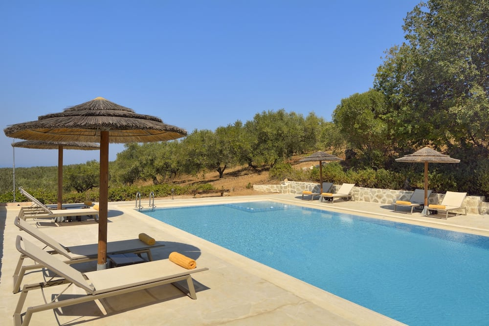 Traditional Hotel - the Oldest Living Olive Tree in the World,