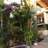 Casa Acento